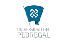 Universidad del Pedregal